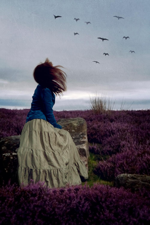 Nicola Taylor Photographer | Profile Image